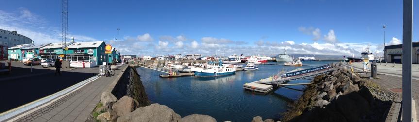 Reykjavik harbor