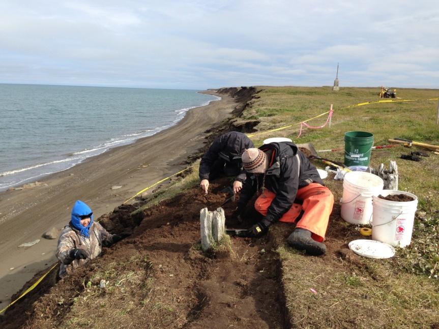 Excavating at Walakpa.