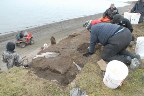 Excavating the disturbed layer. Note the Visqueen.