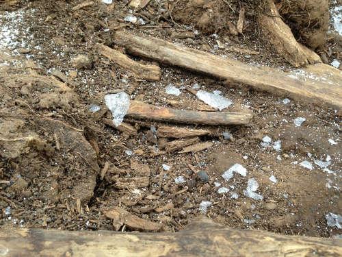 Shards of ice from the tarp after the site was uncovered.