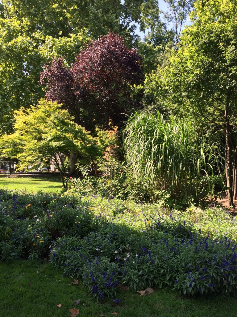 Another garden.